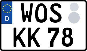 amtliches Eurokennzeichen Wolfstein